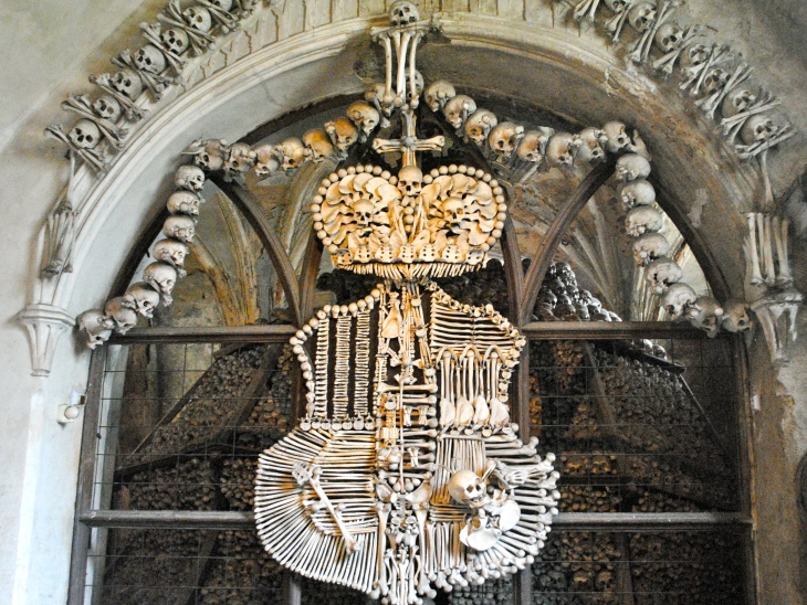 A coat of arms made out of bones